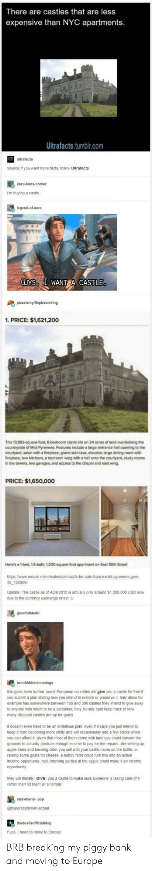 cider: There are castles that are less  expensive than NYC apartments  Ultrafacts.tumblr.com  ultrafacts  Source it you want more facts, follow Ultrafacts  I'm buying a castle  legend-ol-sora  GUYS I WANT CASTLE  1. PRICE: $1,621,200  This 13,993-square-foot, 6-bedroom cestle sits on 24 acres of land overlooking the  countryside of Midi Pyrenees. Features include a large entrance hall opening to the  courtyard, salon with a fireplace, grand staircase, elevator, large dining room with  fireplace, two kitchens, a bedroom wing with a hal onto the courtyard, study rooms  in the towers, two garages, and access to the chapel and east wing  PRICE: $1,650,000  Here's a 1-bed, 15-bath, 1200-square-foot apartment on Eest 30th Street  2 102909  Update The castle as of April 2015 is actualy only around $1,300,000 USD now  due to the currency exchange ratesl D  this goes even further, some European countries will give you a castle for free if  you submit a plan stating how you intend to restore or preserve it Italy alone for  example has somewhere between 100 and 300 castles they intend to give away  to anyone with intent to be a caretaker, they iteraly cant keep track of how  many discount casties are up for grabs  It doesn't even have to be an ambitious plan, even it it says you just intend to  keep it from becoming more shitty and will occasionally add a few bricks when  you can aford it. given that most of them come with land you could convert the  grounds to actually produce enough income to pay for the repairs-like setting up  apple trees and brewing cider you sell with your castle name on the bottle or  raising some goats for cheese, a hobby farm could turn this into an actual  income opportunity. hell, throwing parties at the caste could make it an income  opportunity  they will literally-GIVE you a caste to make sure someone is taking care of  ramer men let them a sit empty  stowebery  Fuck, I need to move to Europe BRB breaking my piggy bank and moving to Europe
