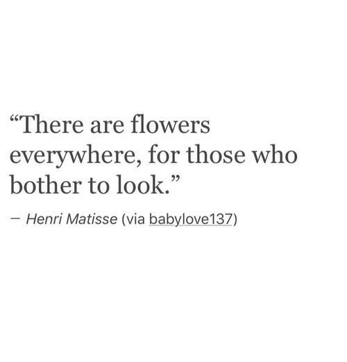 """henri: """"There are flowers  everywhere, for those who  bother to look.""""  Henri Matisse (via babylove137)"""