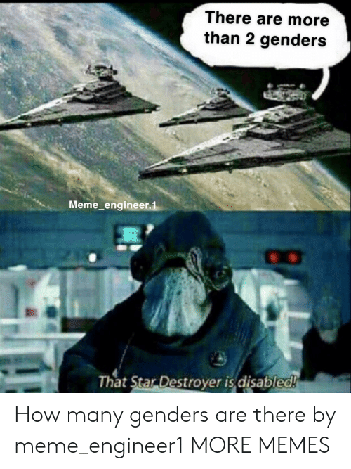 2 Genders: There are more  than 2 genders  Meme engineer,1  hat Star Destroyer is aisablea How many genders are there by meme_engineer1 MORE MEMES