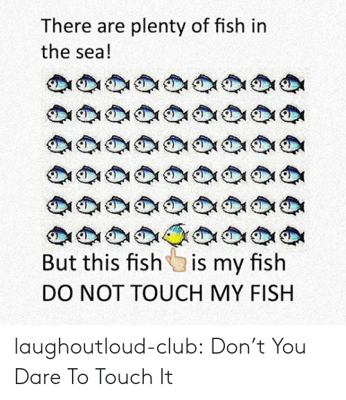 My Fish: There are plenty of fish in  the sea!  But this fish is my fish  DO NOT TOUCH MY FISH laughoutloud-club:  Don't You Dare To Touch It
