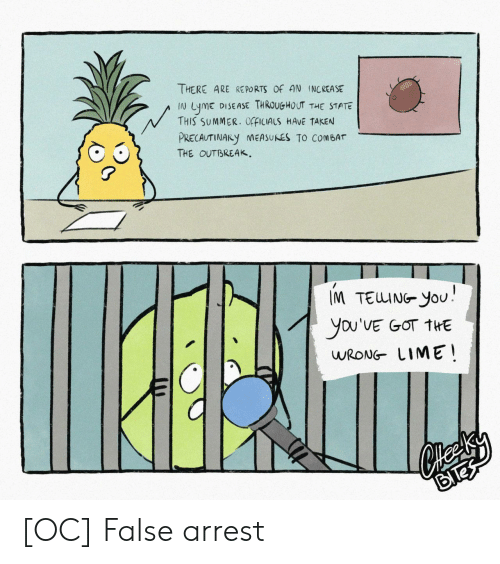 The State: THERE ARE RE PORTS OF AN INCREASE  DISEASE THROUGHOUT THE STATE  LymE  THIS SUMMER. OfFICIALS HAVE TAKEN  N  PRECAUTINARY NEASUNES TO COMBAT  THE OUTBREAK  IM TEUING YoU  you'VE GOT THE  WRONG LIME [OC] False arrest