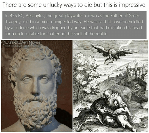 Facebook, Head, and Memes: There are some unlucky ways to die but this is impressive  In 455 BC, Aeschylus, the great playwriter known as the Father of Greek  Tragedy, died in a most unexpected way. He was said to have been killed  by a tortoise which was dropped by an eagle that had mistaken his head  for a rock suitable for shattering the shell of the reptile  CLASSICAL ART MEMES  facebook.com/classicalartimemes