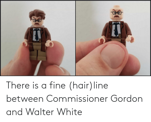 fine: There is a fine (hair)line between Commissioner Gordon and Walter White