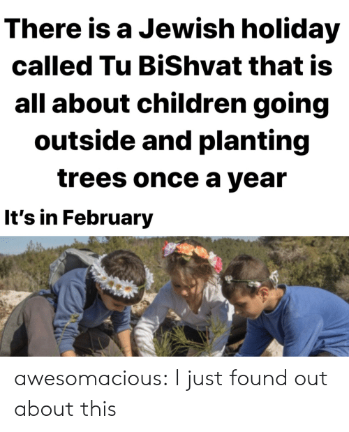Found Out: There is a Jewish holiday  called Tu BiShvat that is  all about children going  outside and planting  trees once a year  It's in February awesomacious:  I just found out about this