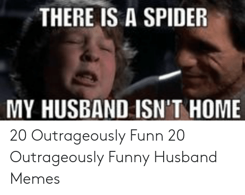 Funny Husband Memes: THERE IS A SPIDER  MY HUSBAND ISN'T HOME 20 Outrageously Funn  20 Outrageously Funny Husband Memes