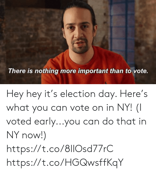 Memes, 🤖, and Can: There is nothing more important than to vote. Hey hey it's election day. Here's what you can vote on in NY! (I voted early...you can do that in NY now!) https://t.co/8lIOsd77rC https://t.co/HGQwsffKqY