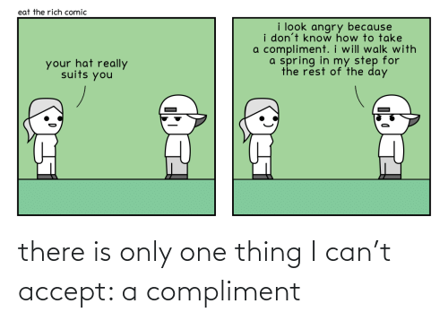accept: there is only one thing I can't accept: a compliment