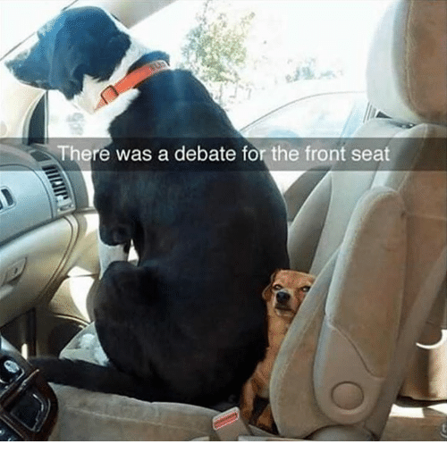 Dank, 🤖, and Debate: There was a debate for the front seat