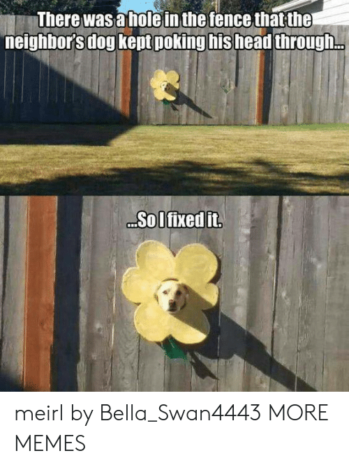 Dank, Head, and Memes: There was a holein the fence that the  neighbor's dog kept poking his head through.  Sol fixed it meirl by Bella_Swan4443 MORE MEMES