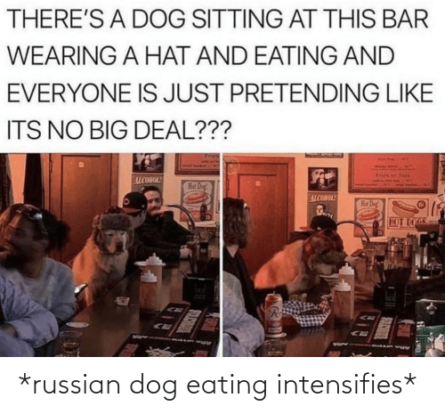 hot dogs: THERE'S A DOG SITTING AT THIS BAR  WEARING A HAT AND EATING AND  EVERYONE IS JUST PRETENDING LIKE  ITS NO BIG DEAL???  Tots  ALCOHOL!  Hat Dog!  ALCOHOL!  Hat Dog  HOT DOGS *russian dog eating intensifies*