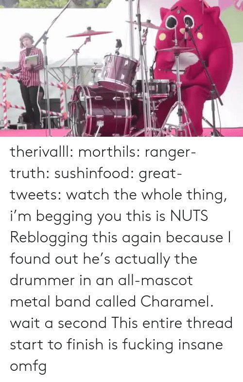 begging: therivalll:  morthils:  ranger-truth:  sushinfood:  great-tweets:  watch the whole thing, i'm begging you  this is NUTS   Reblogging this again because I found out he's actually the drummer in an all-mascot metal band called Charamel.  wait a second   This entire thread start to finish is fucking insane omfg