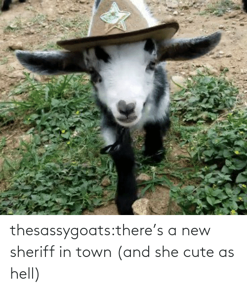 Blank: thesassygoats:there's a new sheriff in town (and she cute as hell)