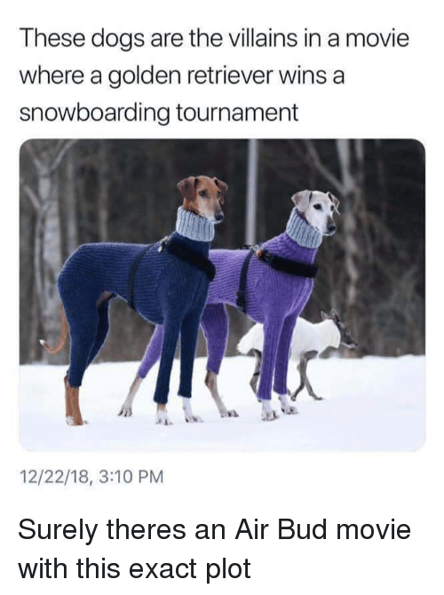 Dogs, Air Bud, and Golden Retriever: These dogs are the villains in a movie  where a golden retriever wins a  snowboarding tournament  12/22/18, 3:10 PM Surely theres an Air Bud movie with this exact plot