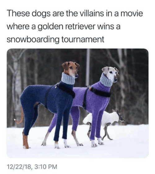 Tournament: These dogs are the villains in a movie  where a golden retriever wins a  snowboarding tournament  12/22/18, 3:10 PM