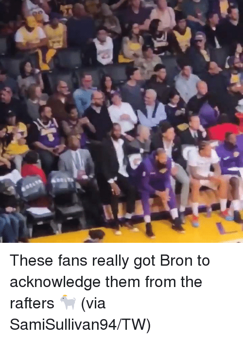 Got, Via, and Them: These fans really got Bron to acknowledge them from the rafters 🐐  (via SamiSullivan94/TW)