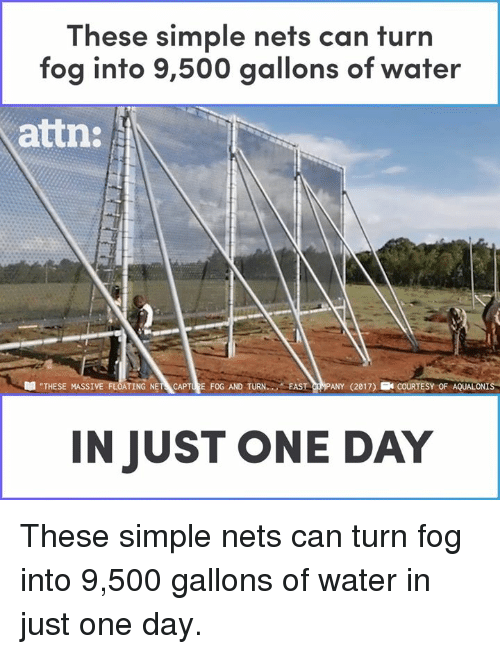 """Memes, Water, and 🤖: These simple nets can turn  fog into 9,500 gallons of water  attn:  """"THESE MASSI  TING NET CAPTURE FOG AND TURN FAST CRMPANY (2017) ECOURTESY OF AQUALONIS  IN JUST ONE DAY These simple nets can turn fog into 9,500 gallons of water in just one day."""