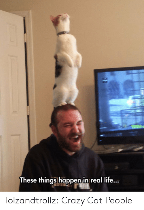 Crazy, Life, and Tumblr: These things happen in real life... lolzandtrollz:  Crazy Cat People