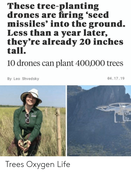 Drones: These tree-planting  drones are firing 'seed  missiles' into the ground.  Less than a year later,  they're already 20 inches  tall.  10 drones can plant 400,000 trees  04.17.19  By Leo Shvedsky Trees Oxygen Life