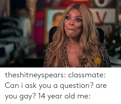 Target, Tumblr, and Blog: theshitneyspears:  classmate: Can i ask you a question? are you gay? 14 year old me:
