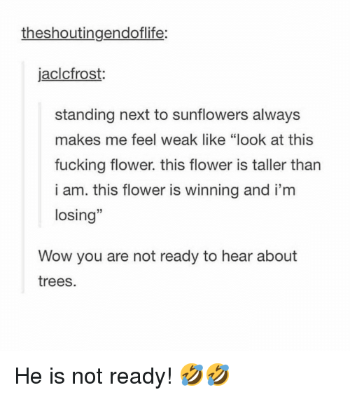 "Fucking, Memes, and Wow: theshoutingendoflife:  jaclcfrost:  standing next to sunflowers always  makes me feel weak like ""look at this  fucking flower. this flower is taller tharn  i am. this flower is winning and i'm  losing""  13  Wow you are not ready to hear about  trees. He is not ready! 🤣🤣"