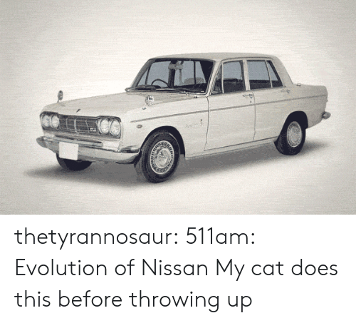 Evolution Of: thetyrannosaur:  511am: Evolution of Nissan  My cat does this before throwing up