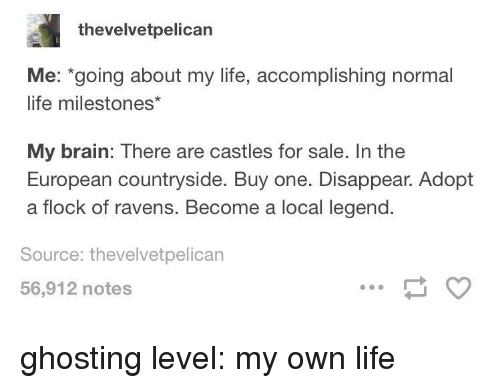 ghosting: thevelvetpelican  Me: going about my life, accomplishing normal  life milestones*  My brain: There are castles for sale. In the  European countryside. Buy one. Disappear. Adopt  a flock of ravens. Become a local legend.  Source: thevelvetpelican  56,912 notes ghosting level: my own life