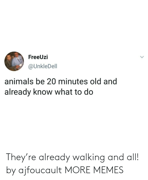 walking: They're already walking and all! by ajfoucault MORE MEMES