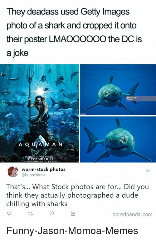 Dude, Funny, and Memes: They deadass used Getty Images  photo of a shark and cropped it onto  their poster LMAOOOOOO the DC is  a joke  N LY IN THEATERS  DECEMBER 21  worm-stock photos  @hupperdook  That's... What Stock photos are for... Did you  think they actually photographed a dude  chilling with sharks  boredpanda.com Funny-Jason-Momoa-Memes