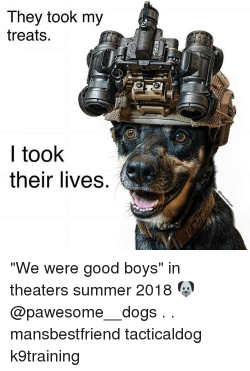 """Dogs, Memes, and Summer: They took my  treats.  I took  their lives """"We were good boys"""" in theaters summer 2018 🐶 @pawesome__dogs . . mansbestfriend tacticaldog k9training"""