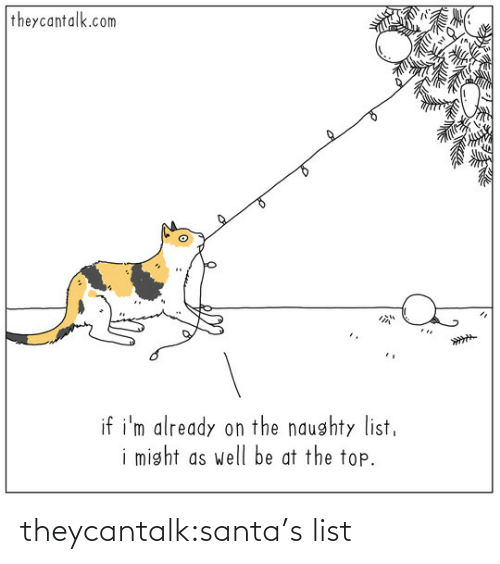 Santa: theycantalk.com  if i'm already on the naughty list,  i might as well be at the top. theycantalk:santa's list