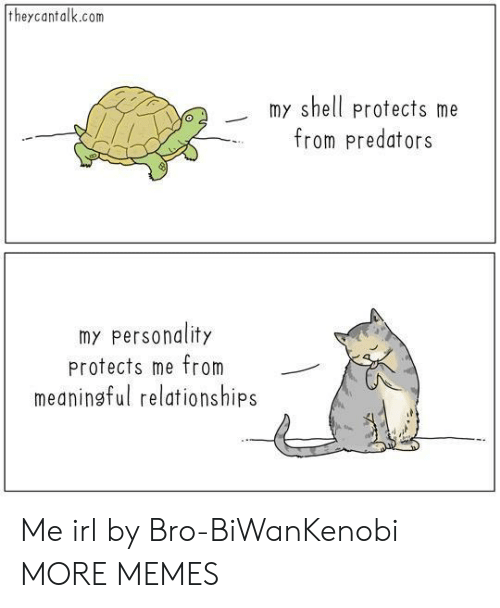 Dank, Memes, and Relationships: theycantalk.com  my shell protects me  from predators  o2  my personality  protects me from  meaningful relationships Me irl by Bro-BiWanKenobi MORE MEMES