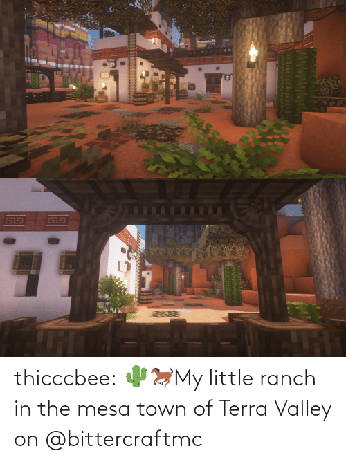 my little: thicccbee: 🌵🐎My little ranch in the mesa town of Terra Valley on  @bittercraftmc