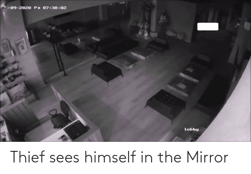 Mirror: Thief sees himself in the Mirror