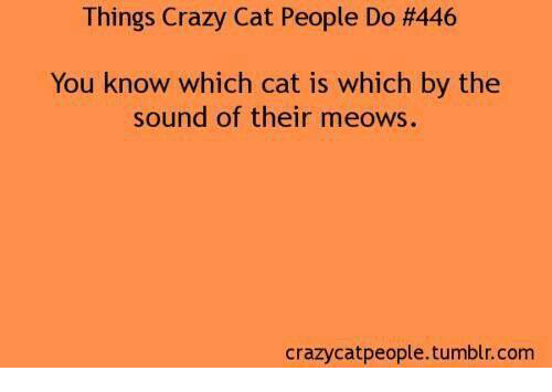 Crazy Cat People: Things Crazy Cat People Do H446  You know which cat is which by the  sound of their meows.  crazy catpeople.tumblr.com