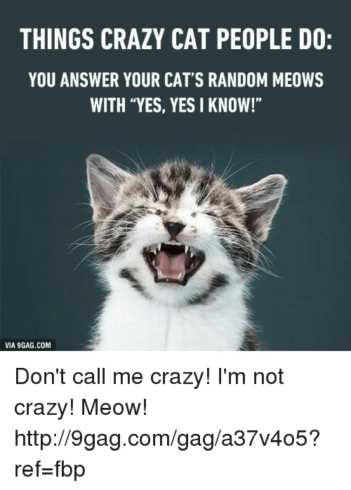 "Crazy Cat People: THINGS CRAZY CAT PEOPLE DO:  YOU ANSWER YOUR CAT'S RANDOM MEOWS  WITH ""YES, YES I KNOW!""  VIA 9GAG.COM Don't call me crazy! I'm not crazy! Meow! http://9gag.com/gag/a37v4o5?ref=fbp"