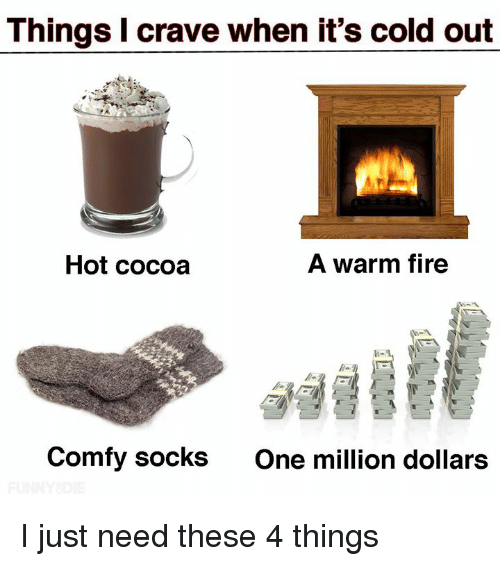 Dank, Fire, and Cold: Things I crave when it's cold out  Hot cocoa  A warm fire  Comfy socks  One million dollars I just need these 4 things