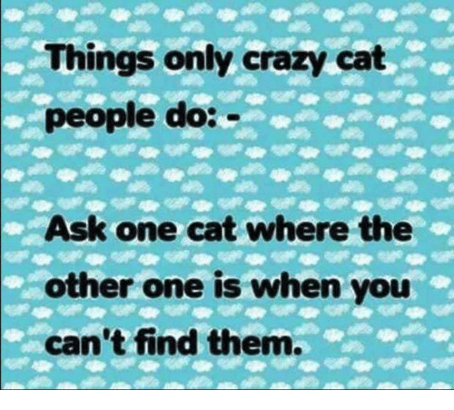 Crazy Cat People: Things only crazy cat  people do:  Ask one cat where the  other one is when you  can't find them.