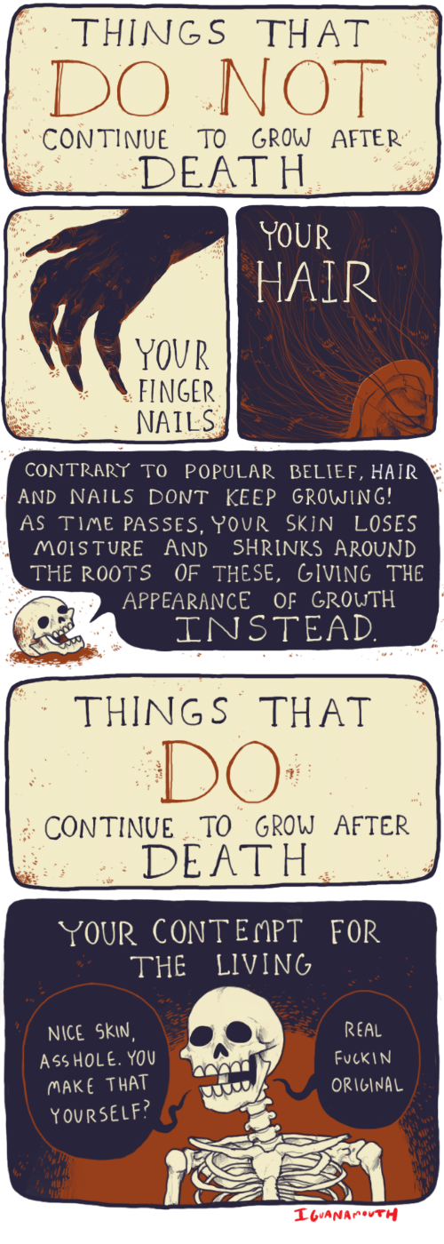 Ass, Death, and Hair: THINGS THAT  DO NOT  CONTINUE TO GROW AFTER  DEATH   YOUR  1  HAIR  YOUR  FINGER  NAILS   CONTRART TO POPULAR BELIEF, HAIR  AND NAILS DONT KEEP GROWING!  AS TIME PASSES, YOUR SKIN LOSES  MOISTURE AND SHRINKS AROUND  THE ROOTS OF THESE, GIVING THE  APPEARANCE OF GROUTH  INSTEAD   THINGS THAT  CONTINUE TO GROW AFTER  DEATH   YOUR CONTEMPT FOR  THE LIVING  NICE SkIN  ASS HOLE. YOU  MAKE THAT  YOURSELF  REAL  FucKIN  ORIGINAL