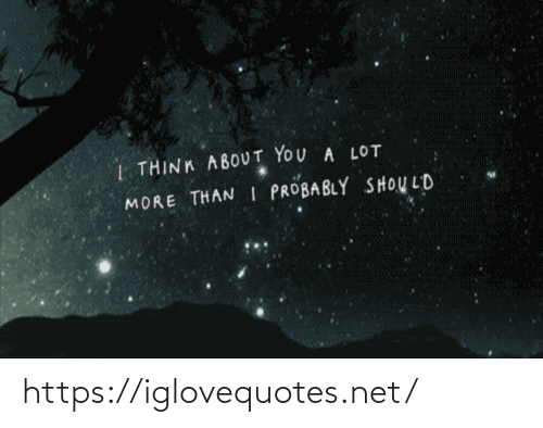 Net, Think, and You:   THINK ABOUT YOU A LOT  MORE THAN I PROBABLY SHOULD https://iglovequotes.net/