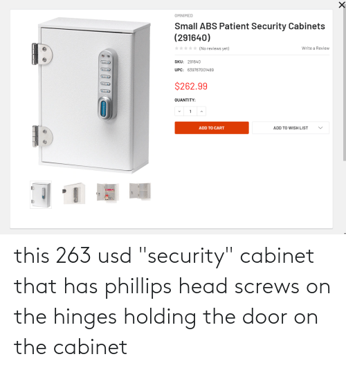 """The Door: this 263 usd """"security"""" cabinet that has phillips head screws on the hinges holding the door on the cabinet"""