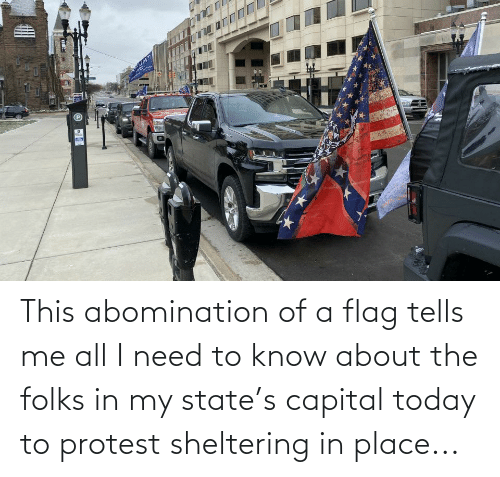 need-to-know: This abomination of a flag tells me all I need to know about the folks in my state's capital today to protest sheltering in place...