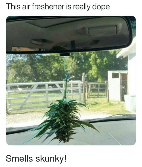 Dope, Weed, and Marijuana: This air freshener is really dope Smells skunky!