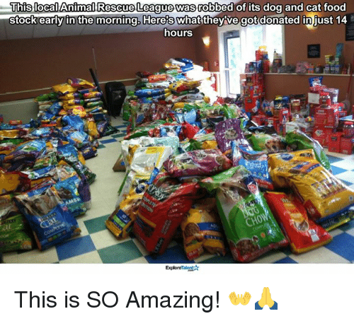 dog-and-cats: This Animal Rescue League was  robbed of its dog and cat food  stock early in the morning Heres what theyve got donated injust 14  hours  ExploreTalent This is SO Amazing! 👐🙏