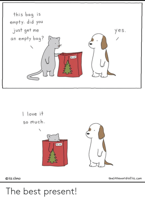 liz: this bag is  empty. did you  just get me  an empty bag?  yes.  te: cat  I love it  so much.  to: cat  © liz climo  thelittleworldofliz.com The best present!
