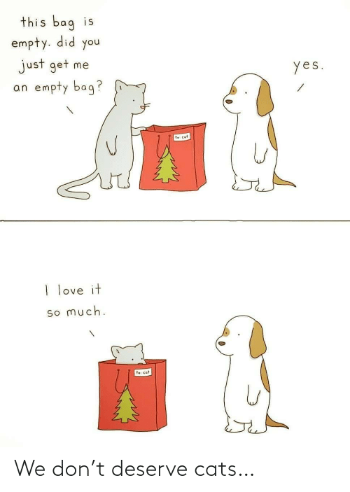 bag: this bag is  empty. did you  just get me  an empty bag?  yes.  te: cat  I love it  so much.  to: cat We don't deserve cats…