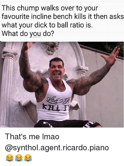 synthol: This chump walks over to your  favourite incline bench kills it then asks  what your dick to ball ratio is  What do you do? That's me lmao @synthol.agent.ricardo.piano 😂😂😂