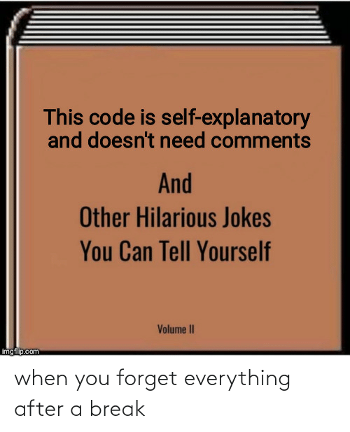 Break, Jokes, and Hilarious: This code is self-explanatory  and doesn't need comments  And  Other Hilarious Jokes  You Can Tell Yourself  Volume II  imgflip.com when you forget everything after a break