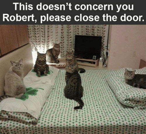 Close The Door: This doesn't concern you  Robert, please close the door.  nsane