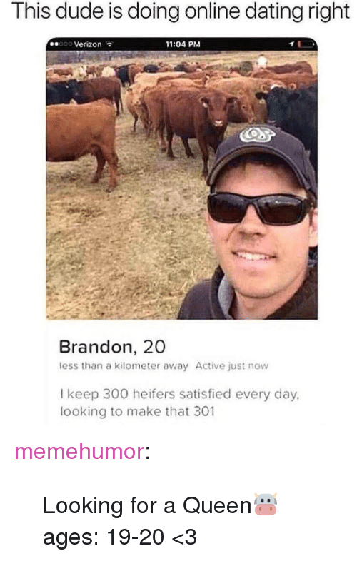 """Dating, Dude, and Online Dating: This dude is doing online dating right  ooo Verizon  11:04 PM  Brandon, 20  less than a kilometer away Active just now  l keep 300 heifers satisfied every day,  looking to make that 301 <p><a href=""""http://memehumor.net/post/173445158809/looking-for-a-queen-ages-19-20-3"""" class=""""tumblr_blog"""">memehumor</a>:</p>  <blockquote><p>Looking for a Queen🐮 ages: 19-20 <3</p></blockquote>"""