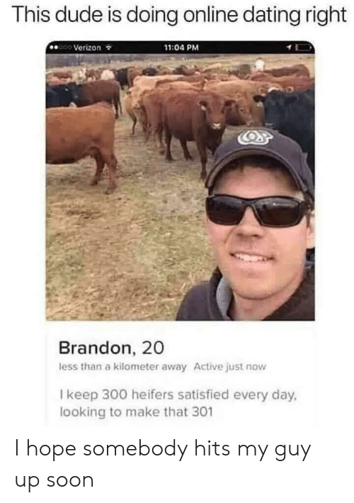 Less Than: This dude is doing online dating right  Verizon  11:04 PM  Brandon, 20  less than a kilometer away Active just now  I keep 300 heifers satisfied every day,  looking to make that 301 I hope somebody hits my guy up soon